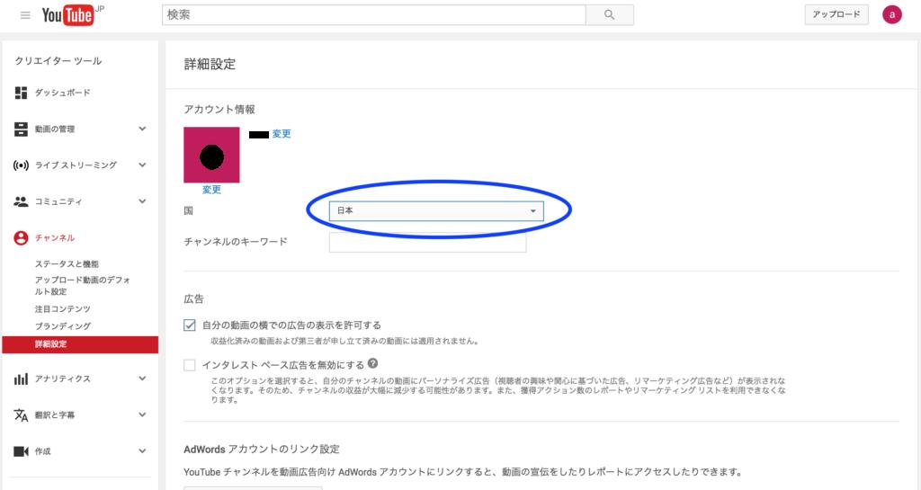 youtube_ad2